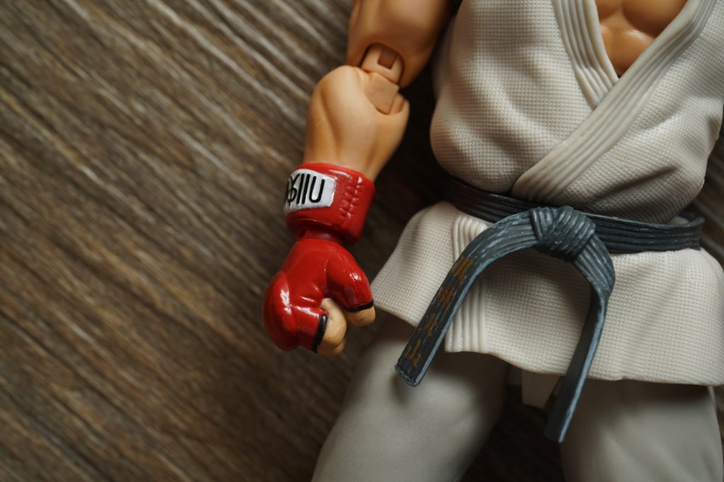 street-fighter-toy-review-figuarts-just-very-random-13