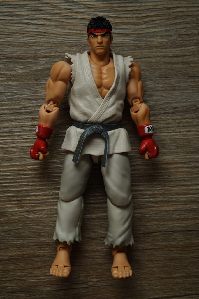 street-fighter-toy-review-figuarts-just-very-random-5