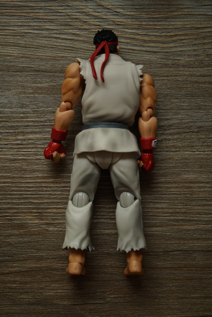 street-fighter-toy-review-figuarts-just-very-random-6
