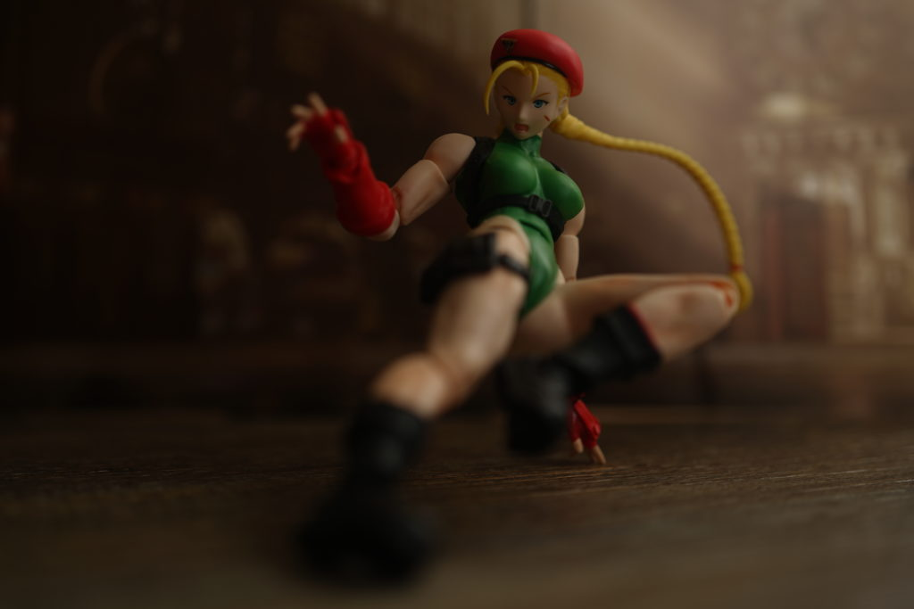 figuarts-cammy-rashid-review-just-very-random-37