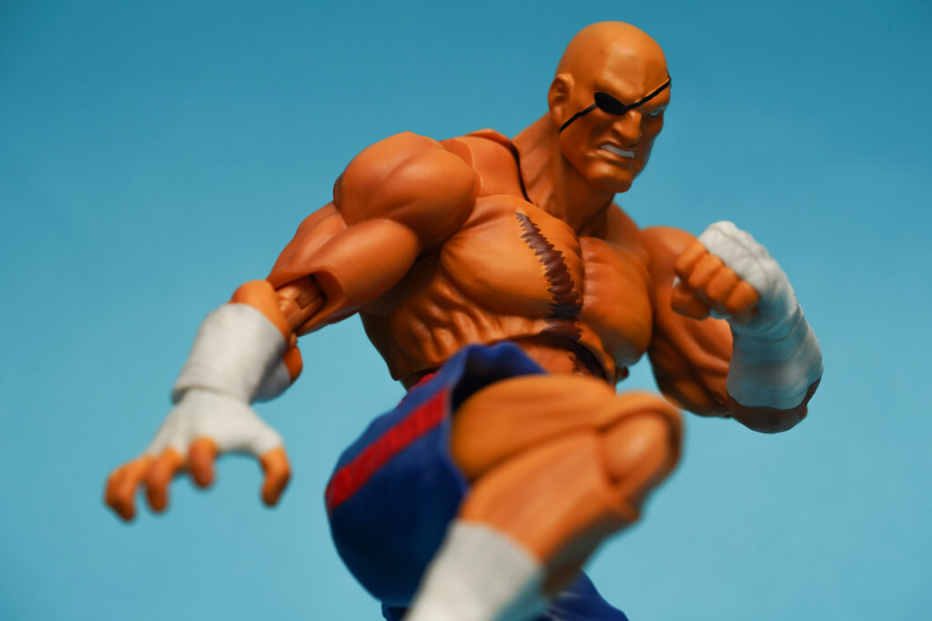 toy-review-s-h-figuarts-street-fighter-sagat-philippines-justveryrandom-3