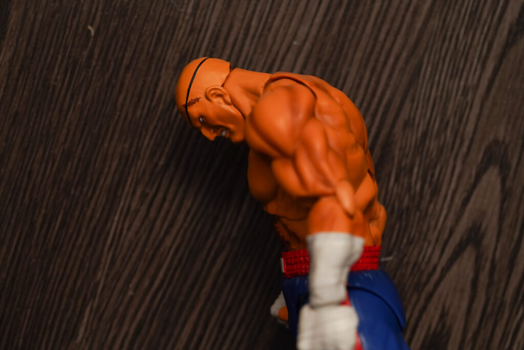 toy-review-s-h-figuarts-street-fighter-sagat-philippines-justveryrandom-35