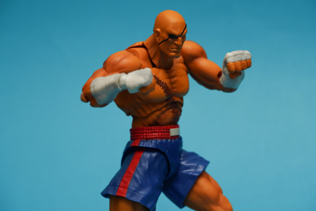 toy-review-s-h-figuarts-street-fighter-sagat-philippines-justveryrandom-5