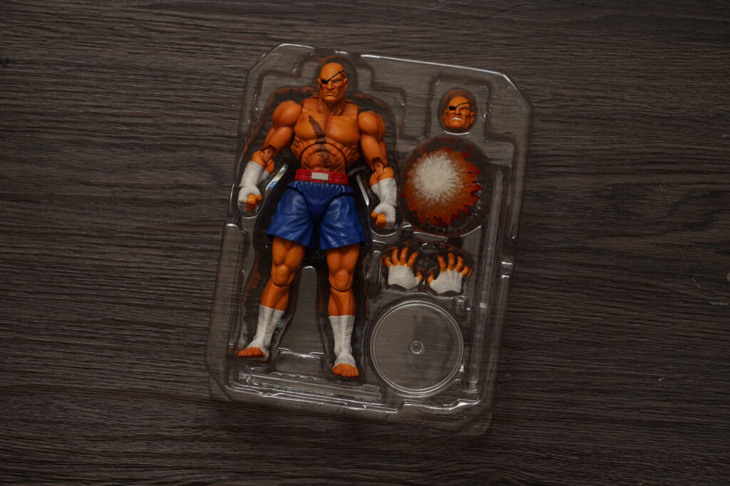 toy-review-s-h-figuarts-street-fighter-sagat-philippines-justveryrandom-51