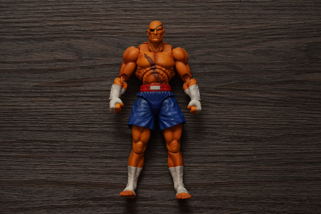 toy-review-s-h-figuarts-street-fighter-sagat-philippines-justveryrandom-54