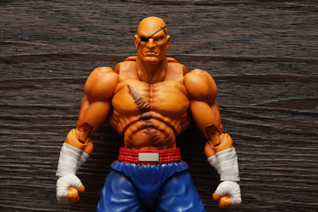 toy-review-s-h-figuarts-street-fighter-sagat-philippines-justveryrandom-56