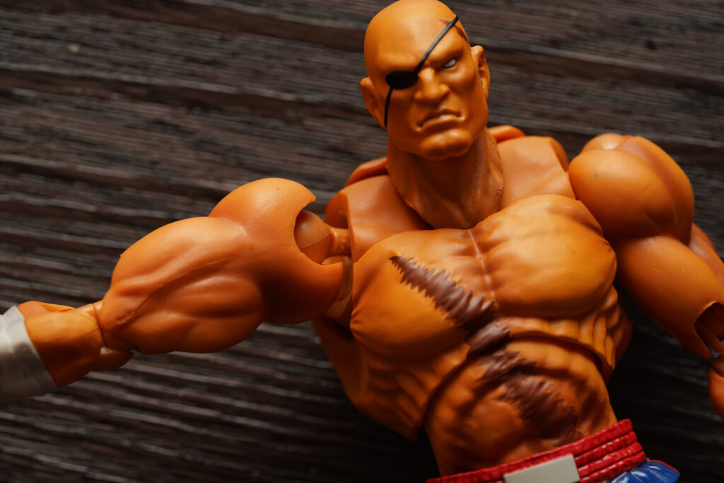 toy-review-s-h-figuarts-street-fighter-sagat-philippines-justveryrandom-58