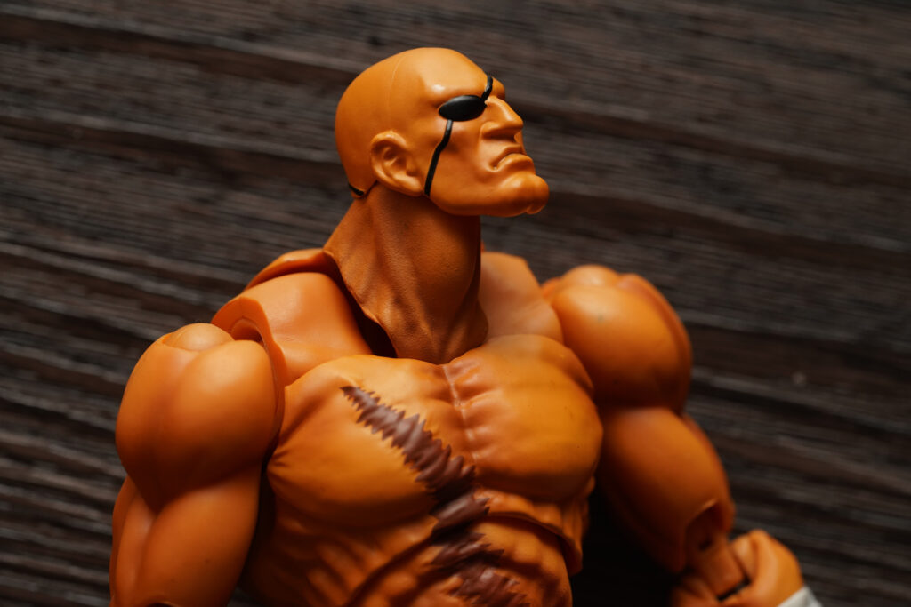 toy-review-s-h-figuarts-street-fighter-sagat-philippines-justveryrandom-59