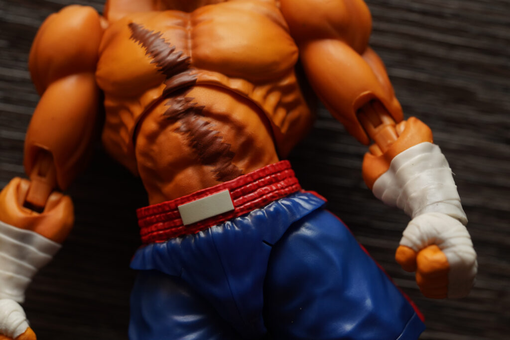toy-review-s-h-figuarts-street-fighter-sagat-philippines-justveryrandom-60