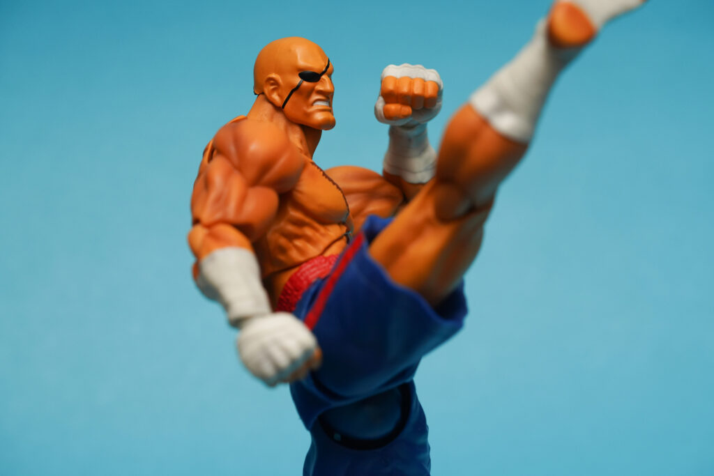 toy-review-s-h-figuarts-street-fighter-sagat-philippines-justveryrandom-9